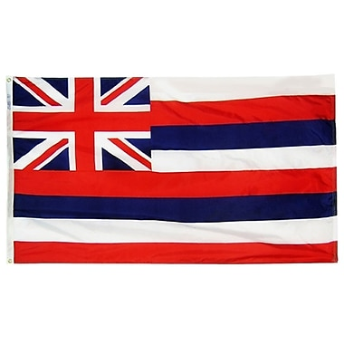 Annin Flagmakers Hawaii State Flag; 3' x 5'