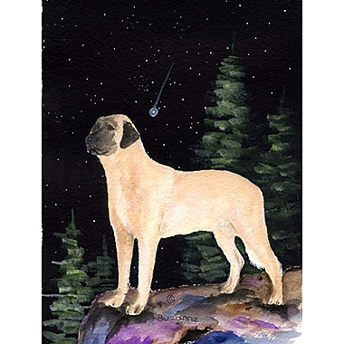 Caroline's Treasures Starry Night Anatolian Shepherd 2-Sided Garden Flag