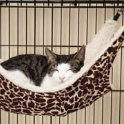 ProSelect Wild Time Small Pet Cage Hammock; Brown by
