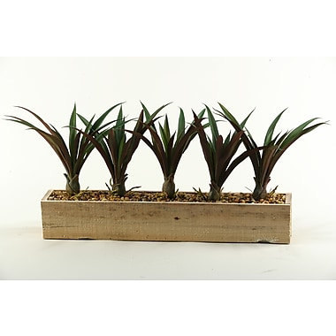 D & W Silks Lily Grass in Rectangle Planter