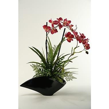 D & W Silks Vanda Orchids Floor Plant in Planter