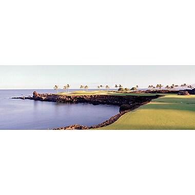 Terrain de golf, Hôtel d'Hawaï, affiche de 12 x 36 po