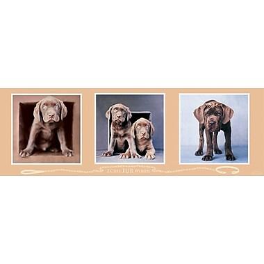 Affiche chiens ridiculement trop mignons, 12 x 36 po
