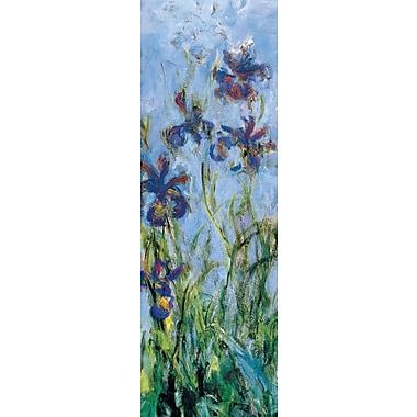 Affiche Iris de Monet, 12 x 36 po