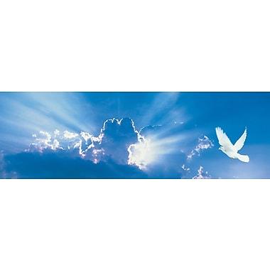 Affiche colombe dans le ciel, 11 3/4 x 35 3/4 po
