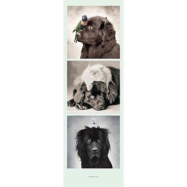 Affiche chiens, 11 3/4 x 35 3/4 po