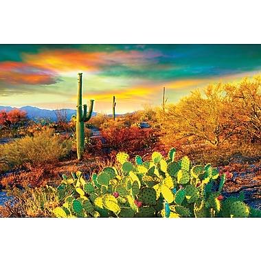 Affiche désert de l'Arizona, 36 x 24 po