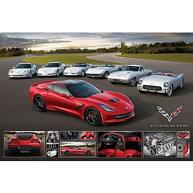 Affiche Corvette Stingray 2014, 36 x 24 po