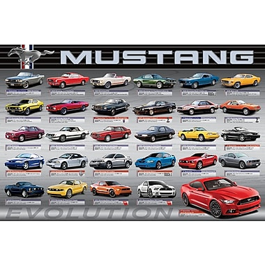 Affiche 50 ans d'évolution de la Ford Mustang LS, 36 x 24 po