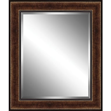Ashton Wall D cor LLC Traditional Wood Framed Beveled Plate Glass Mirror; X Large