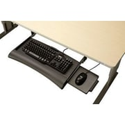 Populas 4'' H x 22'' W Desk Keyboard Tray