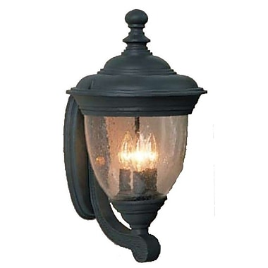 Melissa Tuscany 3-Light Outdoor Sconce; Aged Silver