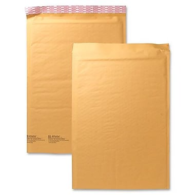 Sealed Air Cushioned Mailer, Size 000, 4