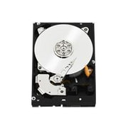WD RE4 WD2003FYYS, hard drive, 2 TB, SATA 3Gb/s