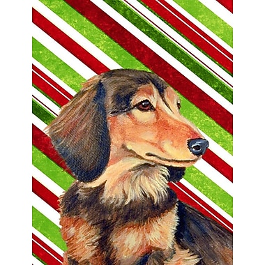 Caroline's Treasures Dachshund Candy Cane Holiday Christmas 2-Sided Garden Flag