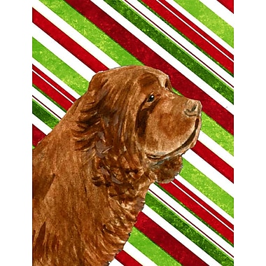 Caroline's Treasures Sussex Spaniel Candy Cane Holiday Christmas 2-Sided Garden Flag