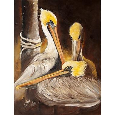 Caroline's Treasures Brown Pelicans House Vertical Flag
