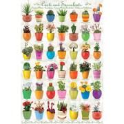 "Cactus & Succulents Poster, 24"" x 36"""