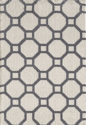 Dynamic Rugs Silky White/Gray Area Rug; Rectangle 3'11'' x 5'7''