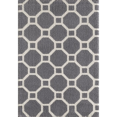 Dynamic Rugs Silky Gray Area Rug; 7'10'' x 10'10''