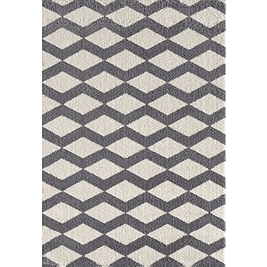 Dynamic Rugs Silky White/Gray Area Rug; 3'11'' x 5'7''