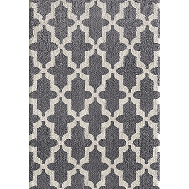 Dynamic Rugs Silky Gray Area Rug; 9'2'' x 12'10''