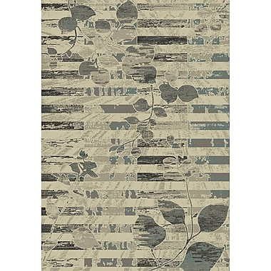 Dynamic Rugs Treasure II Beige/Gray Area Rug; 2' x 3'5''