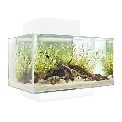 Hagen 6 Gallon Fluval Edge Aquarium Kit;