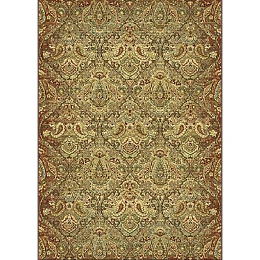 Dynamic Rugs Heritage Green Area Rug; 7'10'' x 10'10''