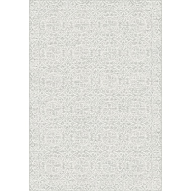 Dynamic Rugs Imperial Gray Area Rug; 2' x 3'11''