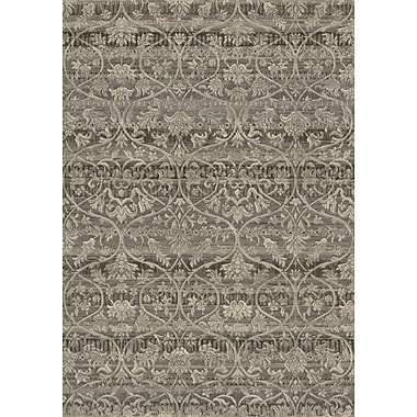 Dynamic Rugs Eclipse Taupe Area Rug; 2' x 3'11''