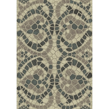 Dynamic Rugs Treasure II Beige Area Rug; 5'3'' x 7'7''