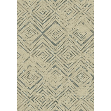 Dynamic Rugs Treasure II Cream Area Rug; 7'10'' x 10'10''