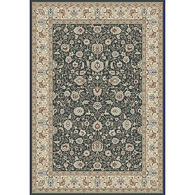 Dynamic Rugs Melody Anthracite Area Rug; 5'3'' x 7'7''