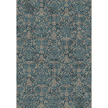 Dynamic Rugs Regal Blue/Brown Area Rug; 3'6'' x 5'6''