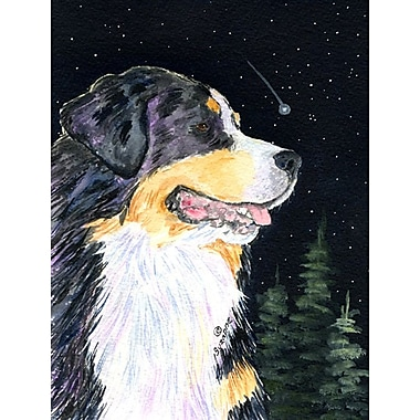 Caroline's Treasures Starry Night Bernese Mountain Dog House Vertical Flag