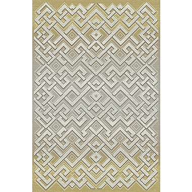 Dynamic Rugs Royal Treasure Gray Area Rug; 5'3'' x 7'7''