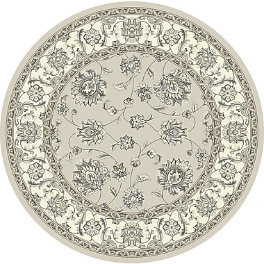 Dynamic Rugs Ancient Garden Soft Gray/Cream Area Rug; Round 5'3''