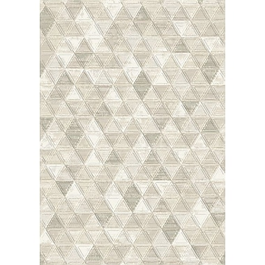 Dynamic Rugs Eclipse Ivory Area Rug; 3'11'' x 5'7''