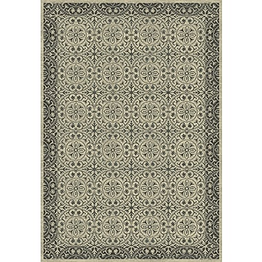 Dynamic Rugs Treasure II Cream/Gray Area Rug; 3'6'' x 5'6''