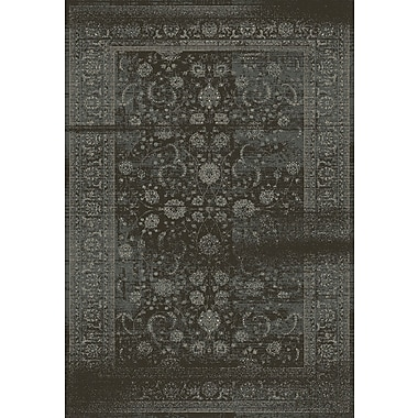 Dynamic Rugs Utopia Antique Gray Area Rug; Runner 2'2'' x 7'7''