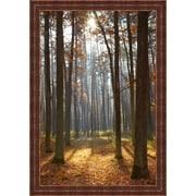 MidwestArtFrame 'Autumn Forest' Print on Wood
