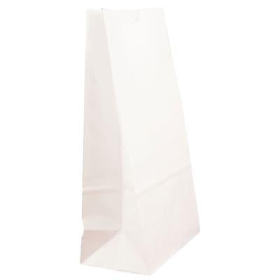 JAM Paper® Kraft Lunch Bags, Medium, 5 x 9.75 x 3, White, 500/box (691KRWHB)