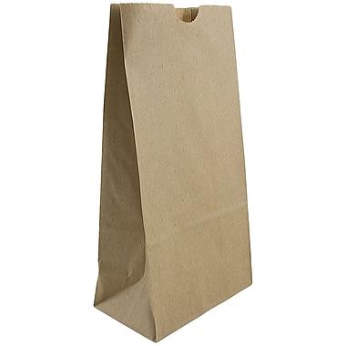 JAM Paper® Kraft Lunch Bags, Medium, 5 x 9.75 x 3, Brown Kraft Recycled, 25/pack (691KRBR)