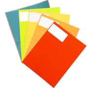 JAM Paper® Mailing Address Labels, 2 x 4, Assorted Bright Colors, 5 packs of 120, 600/set (30272ASST24)