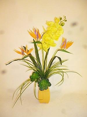 LCGFlorals Tropical Succulent