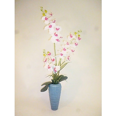 LCGFlorals Phaleanopsis and 3 Dot