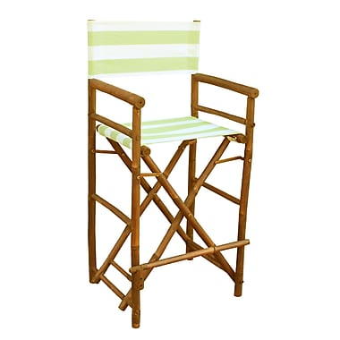 ZEW High Director Patio Dining Chair (Set of 2); Celadon