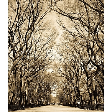 3 Panel Photo Central Park 3 (NY) Photographic Print on Wrapped Canvas; 24'' H x 20'' W x 1'' D