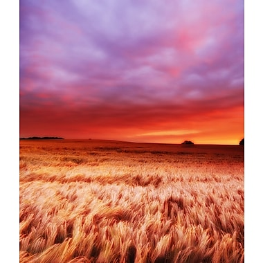 3 Panel Photo At the Sunset Photographic Print on Wrapped Canvas; 20'' H x 24'' W x 1'' D